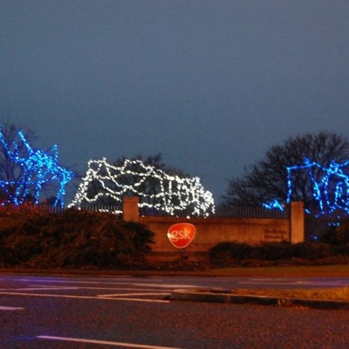 Glaxo-Tree-Lights