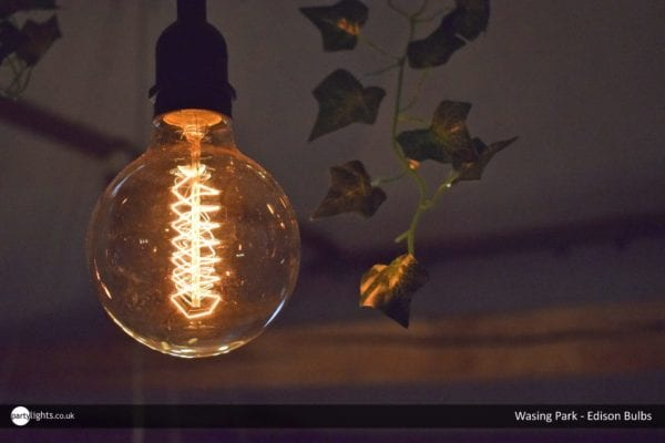 Edison Bulbs at Wasing Park