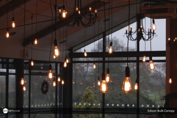 Wedding lighting - Edison bulbs